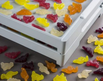Food contact Plastic Starch Trays
